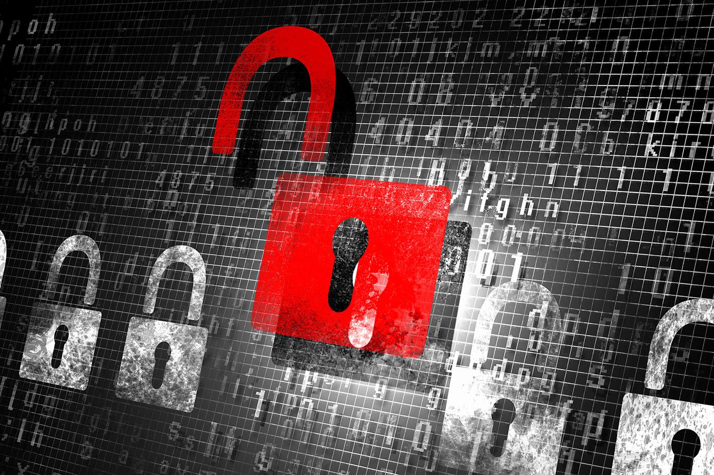 Bug Bounty Programs, Penetration Testing, Vulnerability Assessments